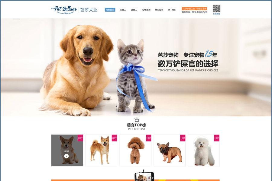上海宠物网站制作需要多少钱