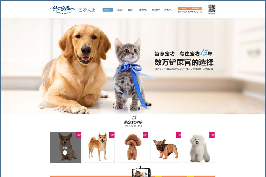 一个宠物交流类网站的制作流程
